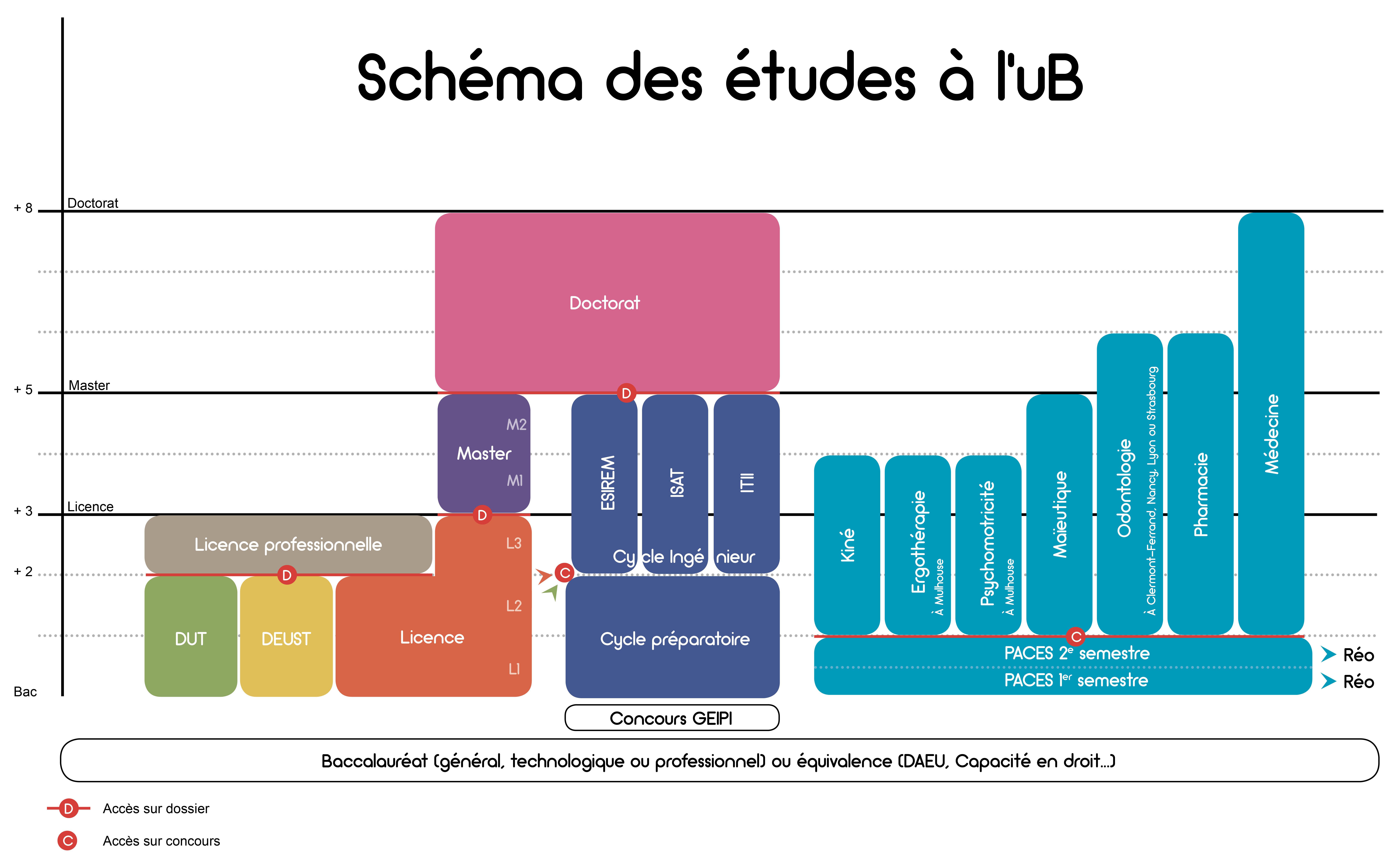 schema etudes uB